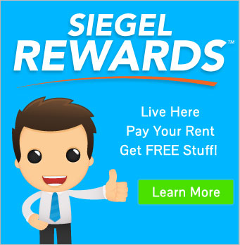 Siegel Rewards!